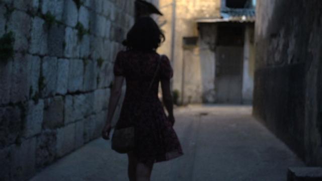 A Gay Girl in Damascus The Amina Profile